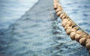 fishing-net3
